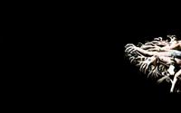 Reaching Hands wallpaper 1920x1200 jpg
