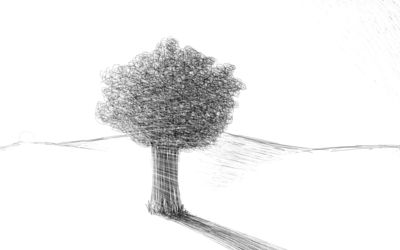 Scribbled tree wallpaper