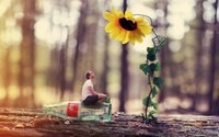 Small man watering the sunflower wallpaper 1920x1200 jpg