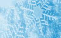Snowflakes [7] wallpaper 2560x1600 jpg