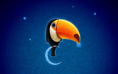 Toucan on the moon wallpaper
