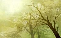 Trees wallpaper 1920x1200 jpg
