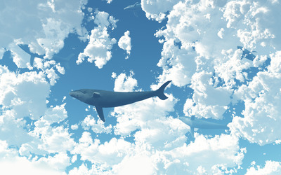 Whale in the sky [2] wallpaper