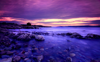 Amazing purple sunset wallpaper 2560x1600 jpg