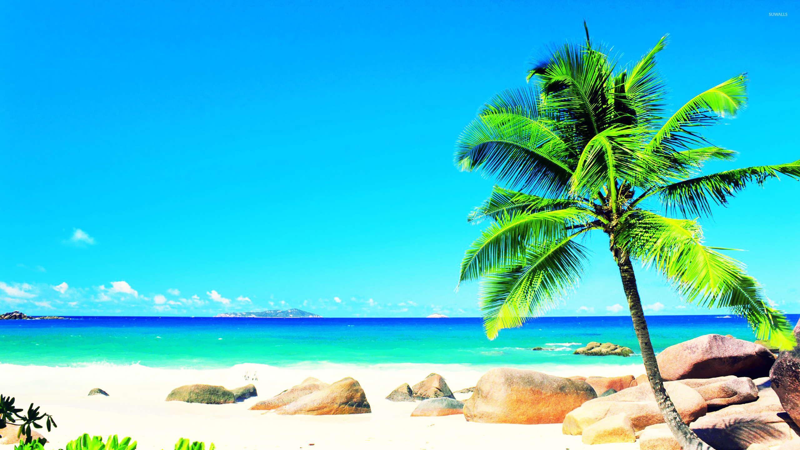 10 Most Popular Beautiful Beach Backgrounds Palm Trees: Anse Source D'Argent [2] Wallpaper