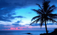 Blue sunset wallpaper 2560x1600 jpg
