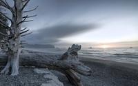 Cold sunset above the gray beach wallpaper 1920x1200 jpg