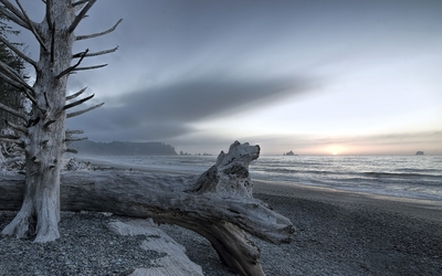 Cold sunset above the gray beach Wallpaper