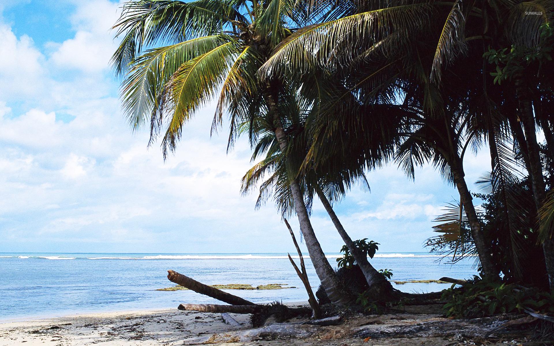 Costa Rica 2 Wallpaper Beach Wallpapers 13926
