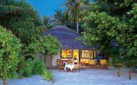 Cozy beach house between palm trees wallpaper 1920x1200 jpg