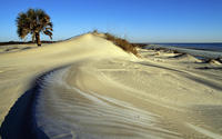 Cumberland Island National Seashore wallpaper 1920x1080 jpg