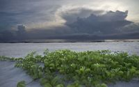 Dark clouds upon the ocean wallpaper 1920x1200 jpg