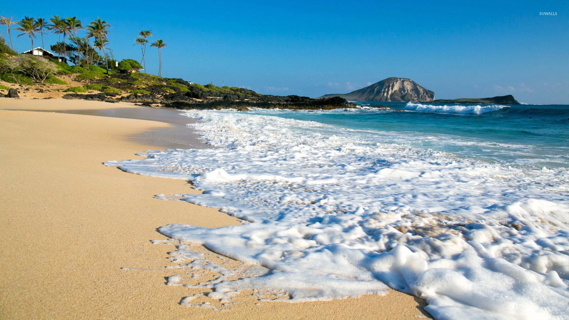 Sandy Beach Wallpaper: Foamy Sandy Beach Wallpaper