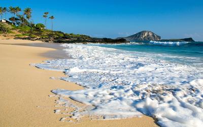 Foamy sandy beach wallpaper
