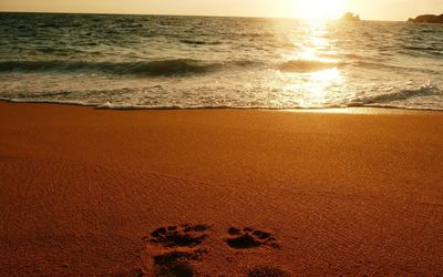 Foot prints on sandy beach wallpaper
