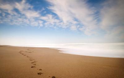 Footsteps on a sandy beach wallpaper
