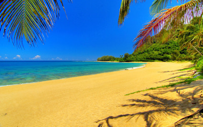 Golden Sands Beach wallpaper