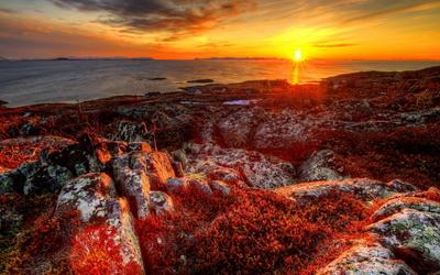 Golden sunset over the rocky coast wallpaper
