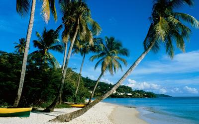 Grand Anse Beach wallpaper