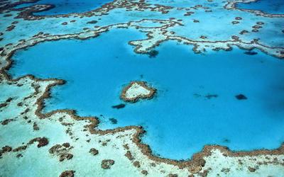 Hardy Reef near Whitsunday Islands wallpaper