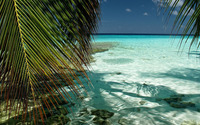 Maldives [23] wallpaper 1920x1080 jpg