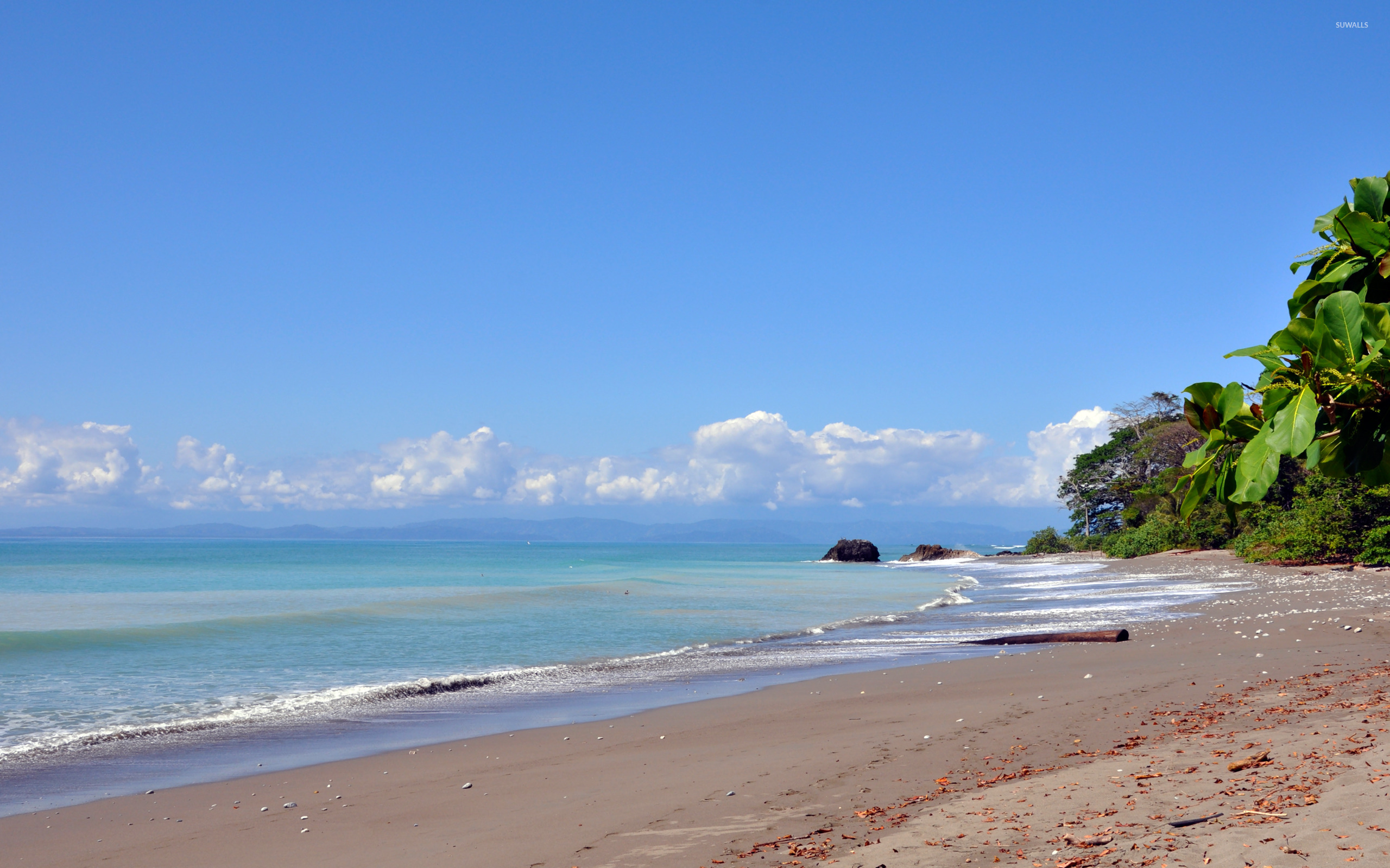 Pan Dulce Beach Wallpaper Beaches Summer Costa Rica