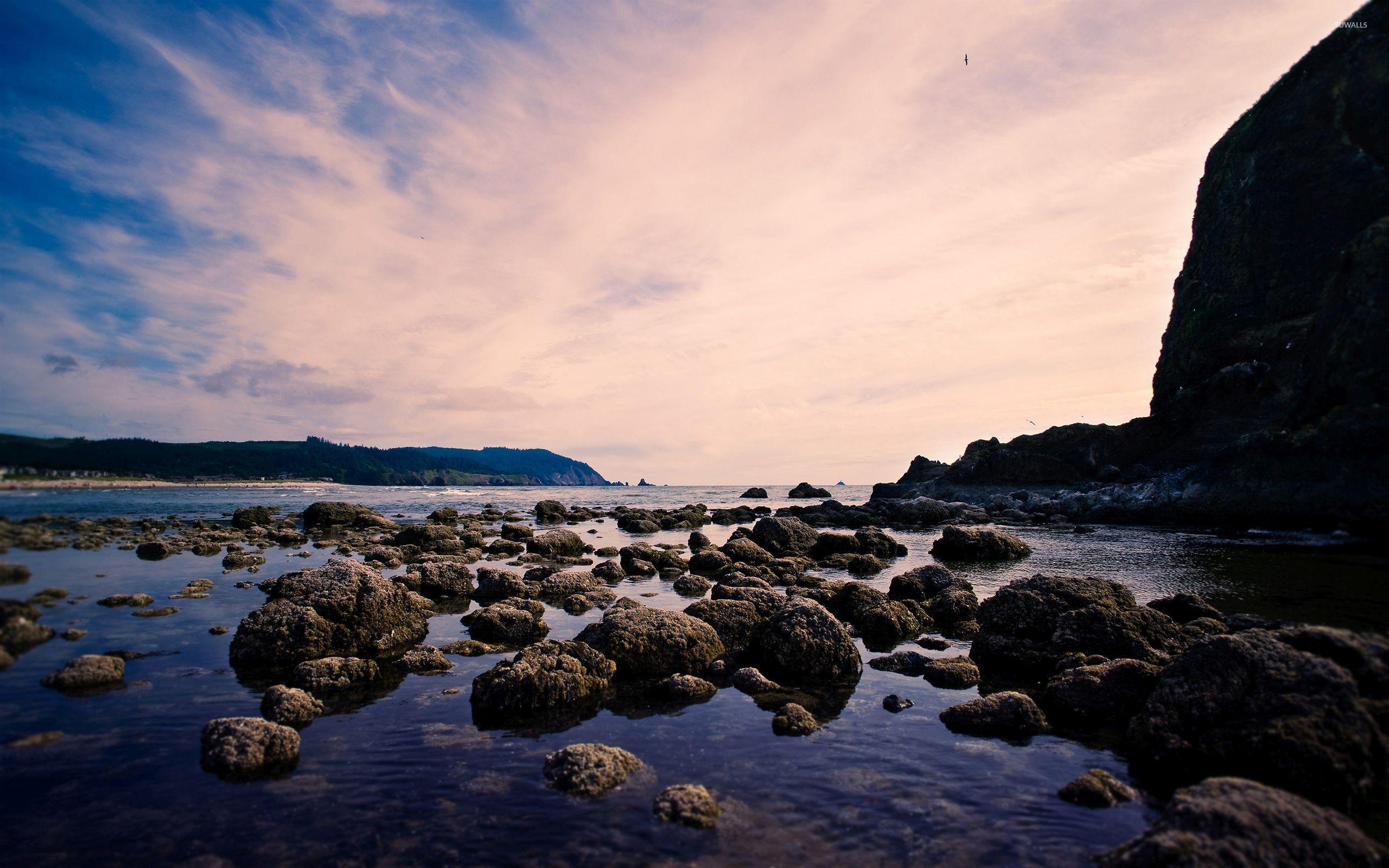 Rocks On The Muddy Ocean Beach Wallpaper Beach Wallpapers