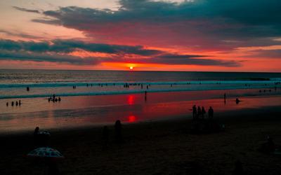 Sunset swimming Wallpaper