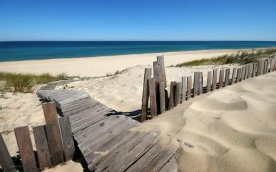 Wooden path to the ocean beach wallpaper