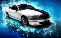 2010 Shelby GT500 wallpaper 1920x1200 jpg