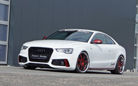 2013 Senner Tuning Audi S5 Coupe wallpaper 2560x1600 jpg
