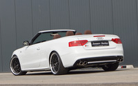 2013 Senner Tuning Audi S5 Coupe [5] wallpaper 2560x1600 jpg