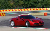 2014 Alfa Romeo 4C [30] wallpaper 2560x1600 jpg