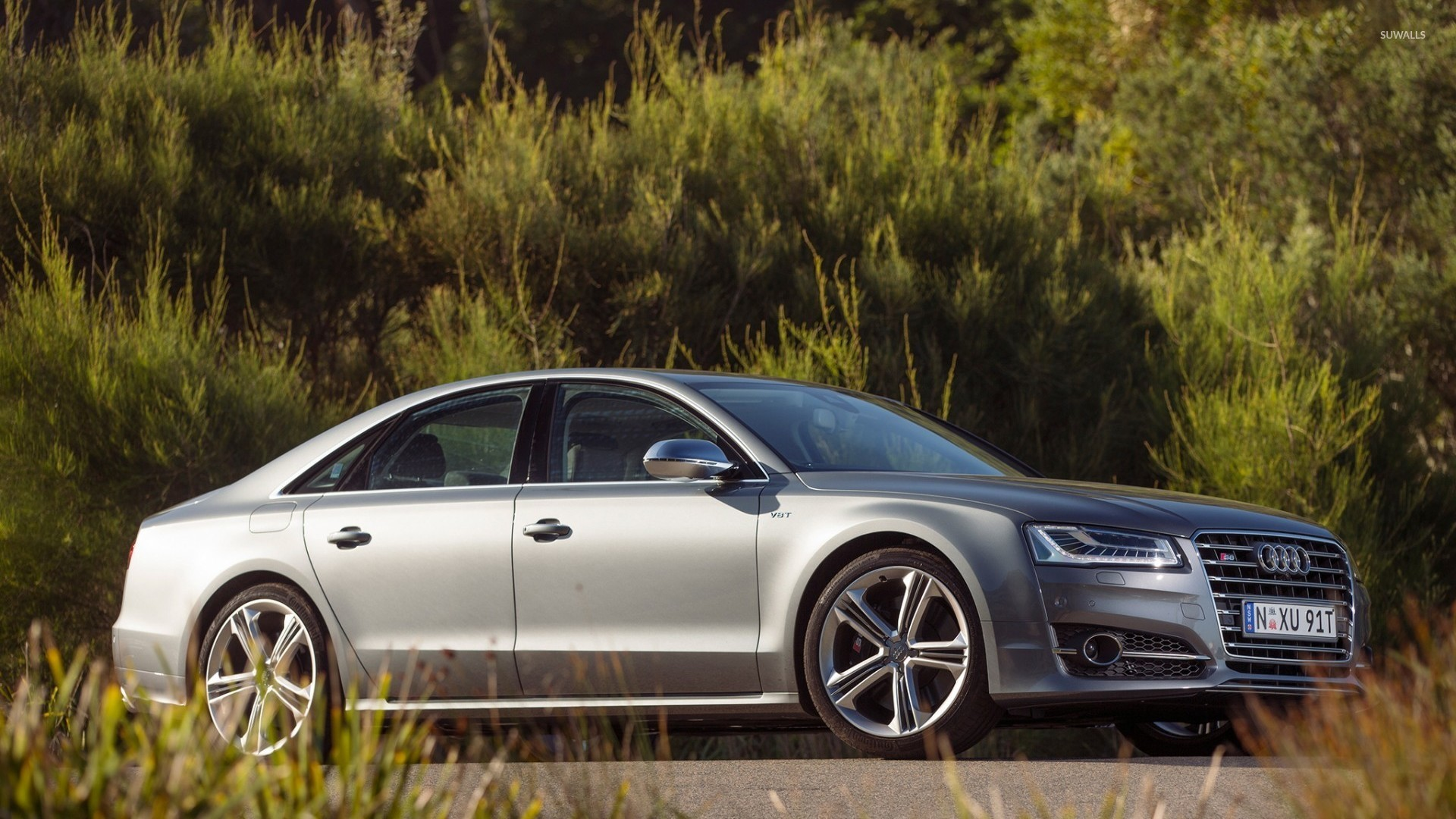 2014 Audi S8 Near The Forest Wallpaper Car Wallpapers