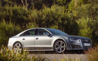 2014 Audi S8 near the forest wallpaper