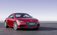 2014 Audi TTS Coupe [2] wallpaper 2560x1600 jpg