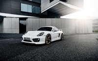 2014 TechArt Porsche Cayman [4] wallpaper 2560x1600 jpg