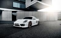 2014 TechArt Porsche Cayman [4] wallpaper 2560x1600 jpg