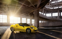 2015 Alfa Romeo 4C Spider [10] wallpaper 2560x1600 jpg