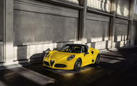 2015 Alfa Romeo 4C Spider [2] wallpaper 2560x1600 jpg