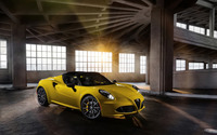 2015 Alfa Romeo 4C Spider [11] wallpaper 2560x1600 jpg