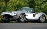 AC Cobra [2] wallpaper 1920x1080 jpg