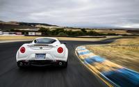 Alfa Romeo 4C [75] wallpaper 2560x1600 jpg