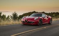 Alfa Romeo 4C [14] wallpaper 2560x1600 jpg