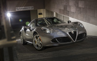 Alfa Romeo 4C [22] wallpaper 2560x1600 jpg