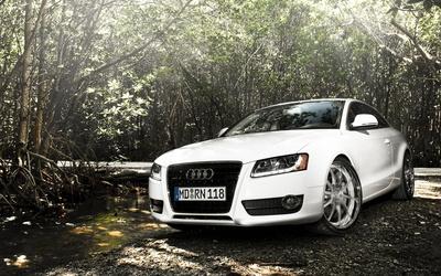 Audi A5 [5] wallpaper