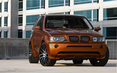 BMW X5 [4] wallpaper