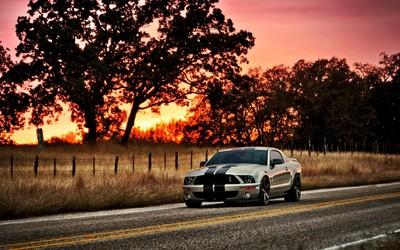Ford Mustang [11] wallpaper