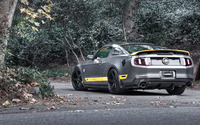 Ford Mustang on a forest road wallpaper 1920x1200 jpg