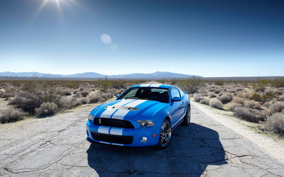 Ford Shelby GT500 [2] wallpaper